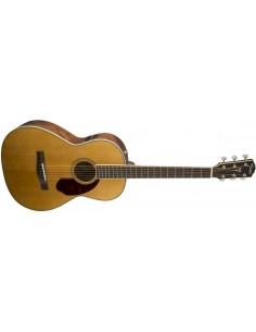 Fender Paramount PM-2 Standard Parlor