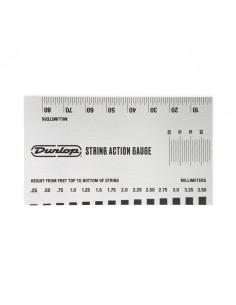DGT04 Action Gauge System 65