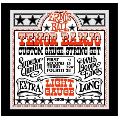 Ernie Ball 2306 - Tenor Banjo Light