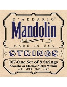 D'Addario J67 011 Mandolino