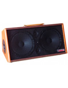 Audiodesign Gipsy 2x8 Amplificatore portatile per chitarra acustica