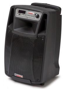 Audiodesign M2 10W/L CASSA AMPLIFICATA DIFFUSORE ATTIVO 10' A BATTERIA CON MICROFONI WIRELESS B-Stock