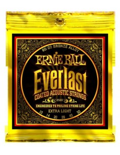 Ernie Ball 2560 - Everlast 80/20 Extra Light